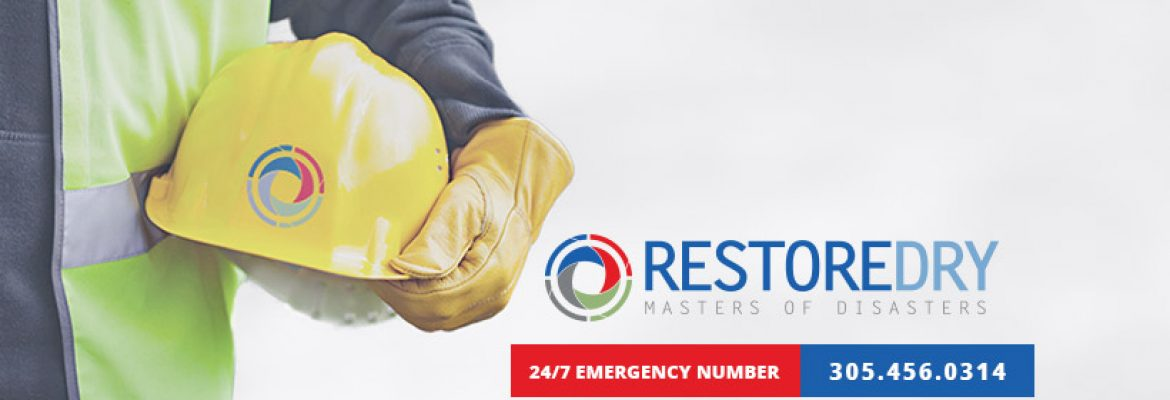 Restore Dry Restoration and Cleaning Services in Hollywood, FL — Cleaning Services