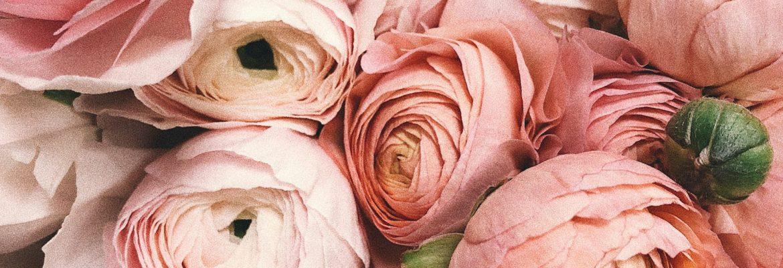 Blooming Flowers in Flushing, New York – Florist
