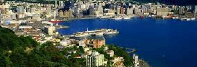 Zvi Lapian Tours 2021 in Wellington, New Zealand – Winter Vacation